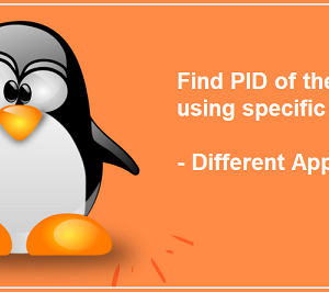 Find the PID of the process that is using specific port